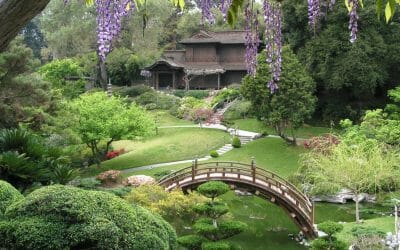 9 of the Best Gardens in North America to See this Summer