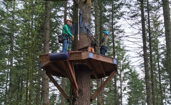 Explore the Oregon forest canopy with Pumpkin Ridge Zip Line Tower