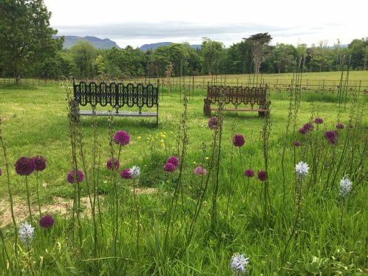 Lissadell House sligo gardens