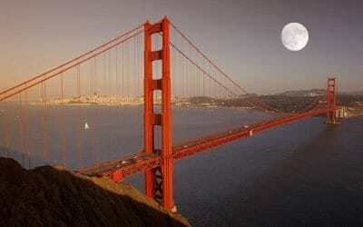 Cable Cars, Kitties and Crabby Christmas: Holidays in San Francisco