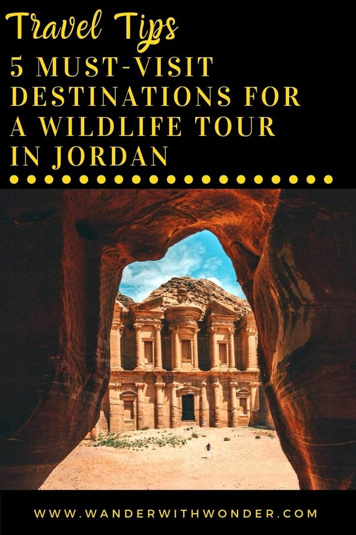 Jordan holds great historical significance yet is also rich in unique and exotic wildlife. Here are our recommendations for 5 must-visit destinations for a wildlife tour in Jordan.