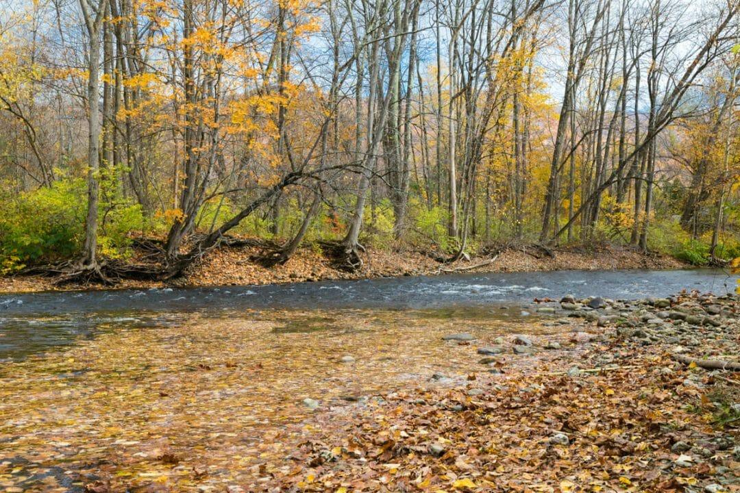 Batten Kill River on road trip in Vermont